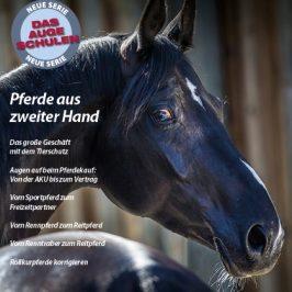 """Das neue Heft ist da: """"Das Auge schulen: Pferde aus zweiter Hand"""""""