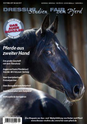 Das neue Heft: Pferde aus zweiter Hand: Das Auge schulen