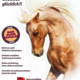Gebiss oder nicht: Das Pferd entscheidet ob mit oder ohne!