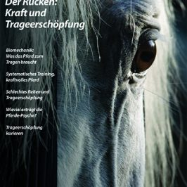 Das neue Heft: Der Rücken – Zwischen Kraft und Trageerschöpfung