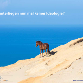 Pferde unterliegen keiner Ideologie