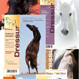 Themenpaket: Junge Pferde