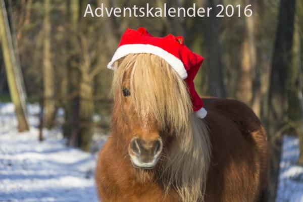 Unser Adventskalender 2016!
